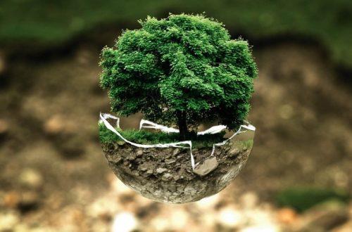 ayudar al planeta